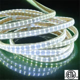 3000k / 6000k / 4000k / Rouge / Vert / Bleu RGB 5050SMD RGB LED Lumière de corde LED Light Strip