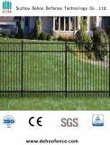 競争価格および最もよい品質と黒い鉄の装飾用に囲うこと