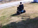 Tecnología horizontal del movimiento de la sinc. Del asiento Escalada Escalada Silla de ruedas