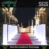 Meubles de mariage d'éclairage de cylindre de décoration d'éclairage LED (LDX-A06)