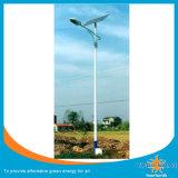 Energiesparende insektentötende Solarlampe (SZYL-SIL-06)