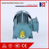 Motore elettrico di fase approvata di CA del CE con alta coppia di torsione