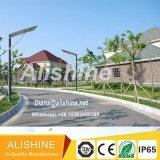 Giardino esterno della lampada che illumina tutti in un indicatore luminoso di via solare del LED