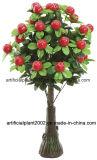 인공적인 Bonsai 플랜트 나무