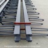 Giunto di dilatazione d'acciaio del ponticello per la strada principale