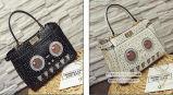 A forma personalizou o saco de ombro enchido bolsas do desenhador do saco de mão para a senhora Sy8137