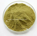 自然なHydroxytyrosol 1%のオリーブ色の葉のエキスのOleuropein 4%~60%