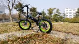 High Qyality 350W Folding E-Bike Disque Frein Electrique Bicyclette Lithium Batterie Brushless Motor avec En 15194 Approbation