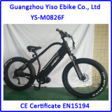 750W 48V/20ah 뚱뚱한 전기 자전거