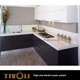 全家のカスタムJoineryの家具Tivo-093VWのための贅沢で新しい台所デザイン