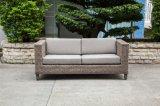 Самомоднейшая софа Wicker/ротанга для напольной мебели (LN-2002)