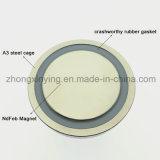 D20mm het Permanente Plateren van het Nikkel van de Magneet Basis Behandelde