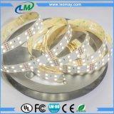 tiras constantes de la corriente LED de 21W los 350LEDs/M SMD 5630