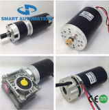 63mm 12V 24V 36V 48V Brush Gleichstrom Motor, PMDC Brushed Worm u. Planetary Gear Motor