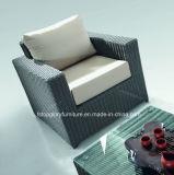 Напольные комплекты ротанга мебели патио и софы сада (TG-804)