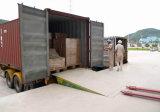 6 Tonnen-stationäre hydraulische Scissor Dock-Planierer (DCQ6-0.6)