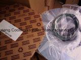 2901000300/1612386900 di separatore di olio per i compressori di CA Ga11/15/18/22