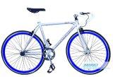 Preiswertes örtlich festgelegtes Gang-Fahrrad