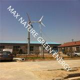 Turbina de viento horizontal del generador de viento del eje de las energías limpias reanudables 500W