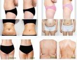 Carrocería de Liposonix Hifu que adelgaza Hifu para la pérdida de peso