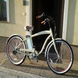 26inch bici de la playa E para el varón