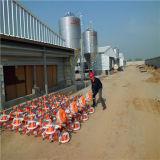 Het prefab Huis van het Gevogelte met de Volledige Vastgestelde Apparatuur van de Landbouw van het Gevogelte