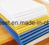 PP Cartonplast/рифленый лист для печатание/пакета цифров