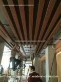 Matériau de construction de panneau de mur de Designes de plafond de PVC/PVC