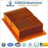 냉각 (BG-009)의 찢긴 열 싱크를 위한 고품질 알루미늄 또는 알루미늄 단면도