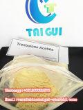 Анти- источник CAS 10161-34-9 порошка стероидов Trenbolone ацетата Trenbolone порошка вызревания