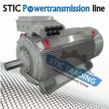 高圧CacaおよびTefc Marine Electric Motor