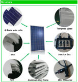 中国の工場からのよい価格の高性能の多太陽電池パネル300W
