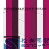 PPGI Color Coated Steel Coil Sheet en Coils