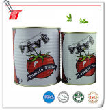 goma de tomate conservada orgánica de la marca de fábrica de 400g Veve