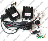 Starker WS 12V 100W 6000k HID Xenon Bulbs HID Xenon Kit Plug and Play HID Xenon Conversion Kit