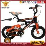 Roter Berg scherzt Fahrrad-blaue Aufhebung-Kind-Fahrräder