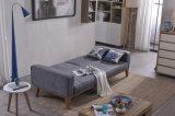 Buen sofá de la sala de estar del precio de la alta calidad