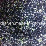 Lycium nero secco rosso di Goji dell'alimento biologico della nespola