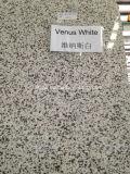 Естественный каменный гранит Nenus белый для Countertop кухни/верхней части тщеты