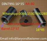 O Hex aparafusa o parafuso de tampão Hex do soquete DIN7991