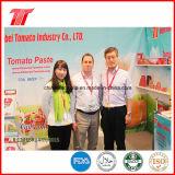 Ketchup de tomate da alta qualidade da fábrica chinesa da pasta de tomate