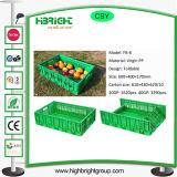 Compartimientos plegables plásticos de los compartimientos plásticos del volumen de ventas para la fruta vegetal