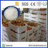 Direktes Sell ENV für Producing Styrofoam Box/Disposable Polystyrene/Expandable Polystyrene