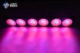 중국은 알루미늄 LED 플랜트를 수경법 Greehouse를 위해 가볍게 증가한