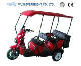 전기 자동 인력거 세발자전거 성인, Elederly 기동성 스쿠터, En12184를 가진 성숙한 전송자 세발자전거