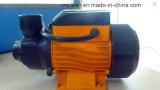 Водяная помпа Qb60 турбинки конструкции Италии латунная Qb70 Qb80