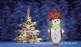 Lumière de motif de décoration de Noël de DEL