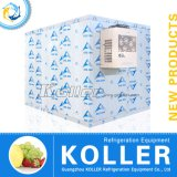 CER Approved 12 Tons Walk in Freezer für Fish und Meat Storage