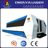 Ipg 1000W CNC Fiber Laser Cutting Machine für Plate Metal