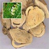 Fuente de la fábrica Sophora extracto de raíz, Matrine por HPLC